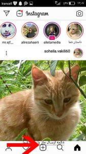 چگونگی نمایش پست در feed اینستاگرام